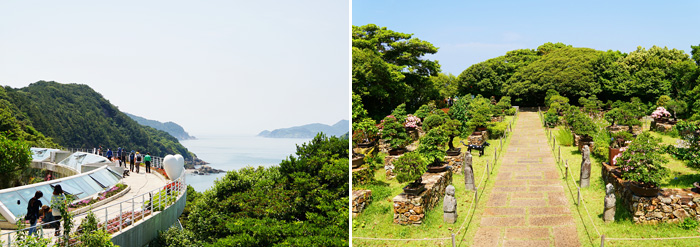 Du-lich-tongyeong-va-dao-Geojedo-han-quoc