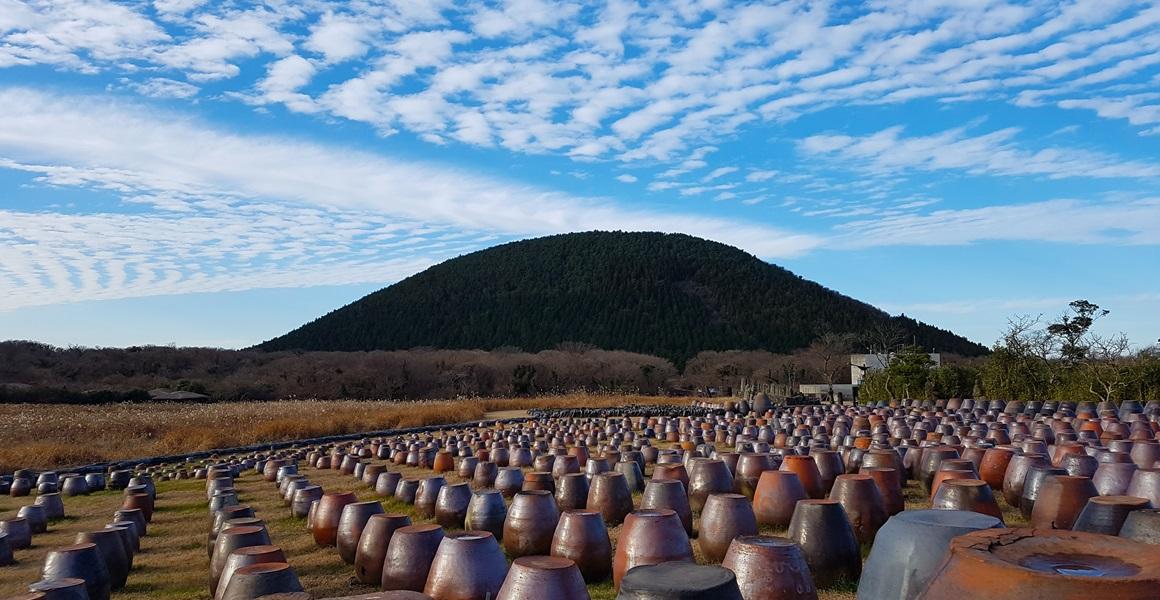 Công Viên Đá Jeju, Rừng Thiên NhiênGyorae