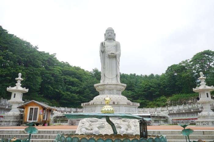 Trải nghiệm du lịch Daegu thực tế 3