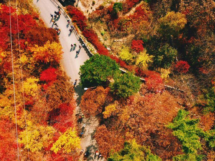 Bí kíp du lịch Hàn Quốc mùa thu - Chìm đắm trong thiên đường lãng mạn