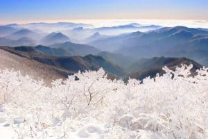 Chuyến đi kì thú đến Taebaek trong mùa đông lạnh giá