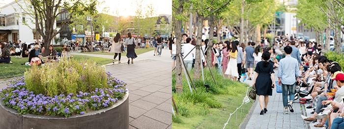 Những cung đường đi dạo hợp tâm trạng tại Seoul 3