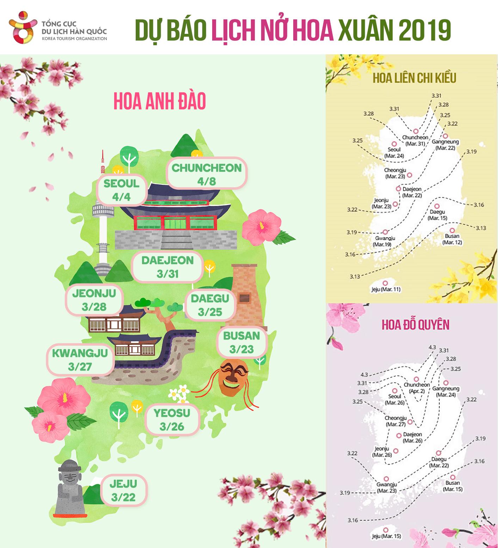Top 22 địa điểm ngắm hoa anh đào và hoa xuân ở Seoul (Phần 1)