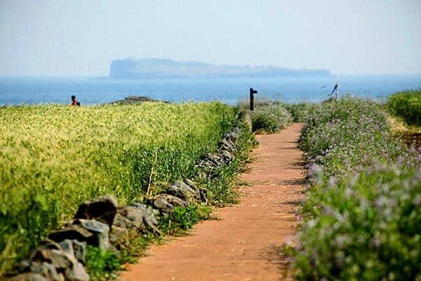 Đường mòn Olle Đảo Gapado