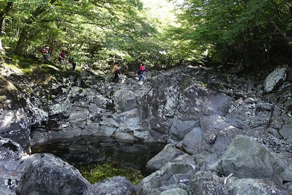 Đường mòn sinh thái) ở Núi Hallasan Đường Dongbaek 1