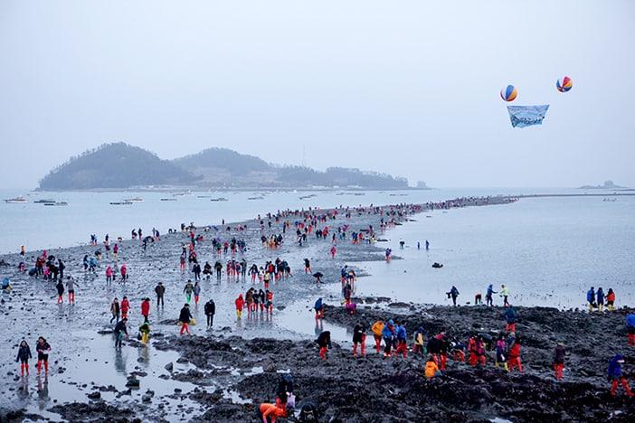 Lễ hội đường biển Jindo Miracle
