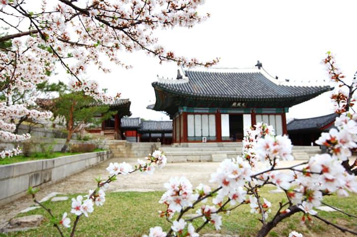 Cung điện Changgyeonggung