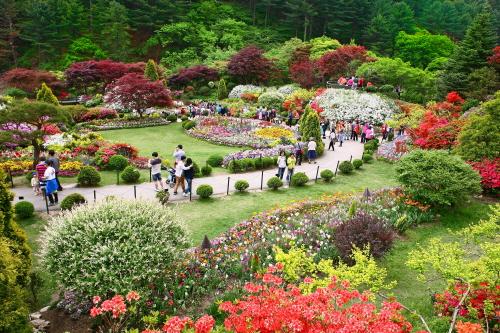 Lễ hội mùa xuân tại Khu vườn ban mai