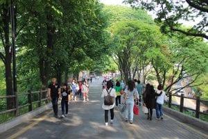 Tận hưởng không khí du lịch Hàn Quốc vào mùa hè