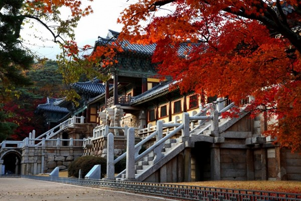du lịch gyeongsangbuk 2