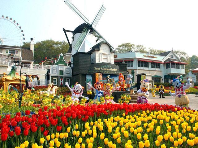 kinh nghiệm du lịch hàn quốc mùa xuân 4