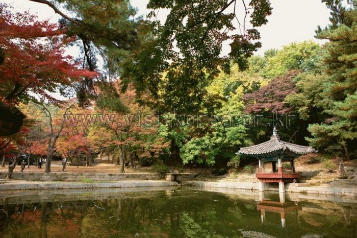 tour du lịch hàn quốc tháng 9 - 2
