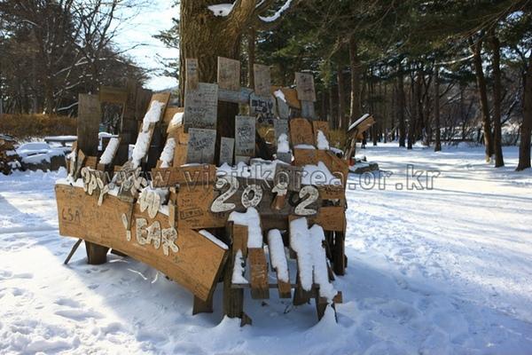 du lịch mùa đông ở hàn quốc