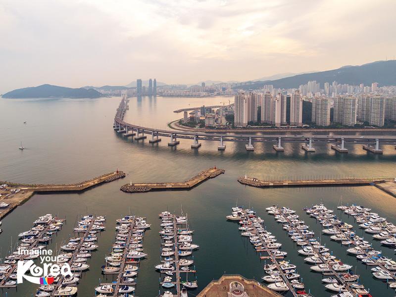 Hiện nay trung tâm Trung tâm du thuyền Seongman cũng cung cấp các tour du thuyền dạo quanh thành phố Busan cho du khách