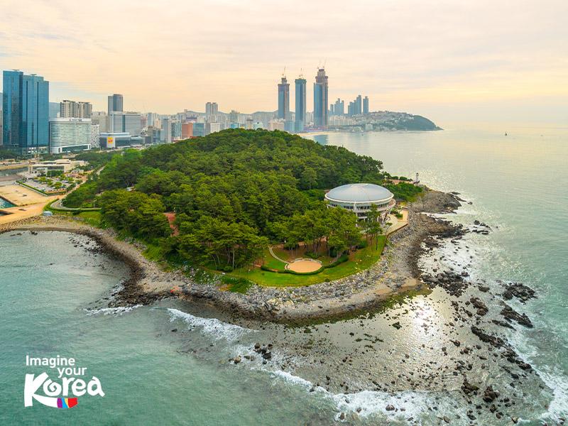 Đảo Dongbaek khi xưa vốn là hòn đảo nhỏ nhưng theo thời gian, trầm tích bồi tụ đã kết nối hòn đảo này với đất liền, giúp du khách dễ dàng di chuyển tới đây