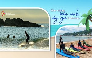 Nơi khởi nguồn của trào lưu lướt sóng – Đến biển Busan thôi!
